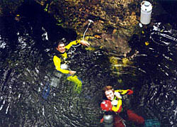 Cave divers - photo by Steve Gerrard